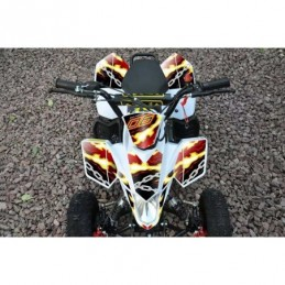 MINIQUAD FOX XXL 50cc 2...